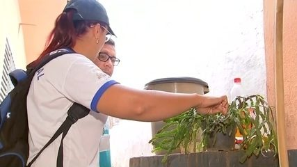 Secretaria de Saúde faz arrastão contra criadouros do Aedes aegypti em Birigui