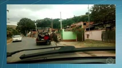 Cavalo é arrastado por carro em rua de Valença