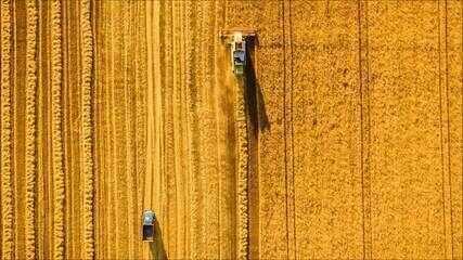 Saiba mais sobre o agronegócio brasileiro