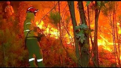 Incêndios florestais preocupam as autoridades na Europa