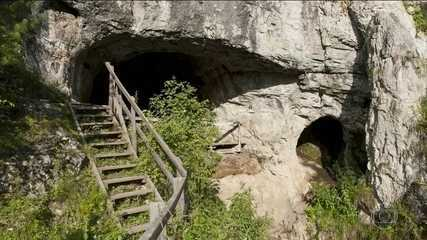 Cientistas europeus anunciaram descoberta revolucionária de neandertais e denisovanos