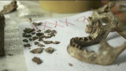 Pesquisadores podem ter encontrado pedaço do fóssil de Luzia
