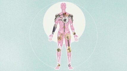 Viva Você: corpo humano é 'máquina' que precisa de manutenção