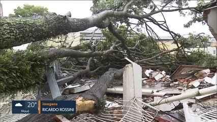 Chuva e vento forte destelham casas e derrubam árvores no ABC