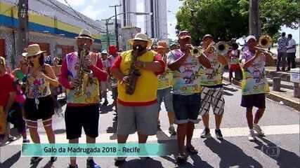 Pinto da Madrugada está pronto para tomar as ruas do Recife no Carnaval 2019