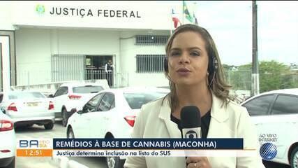 Justiça determina inclusão de remédios à base de cannabis na lista do SUS