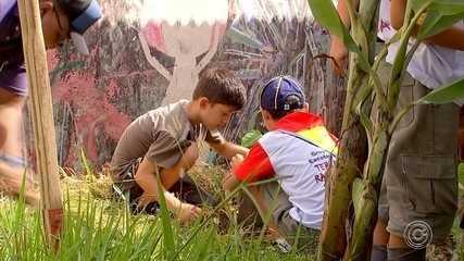 Escoteiros fazem ação de plantio de árvores em Sorocaba