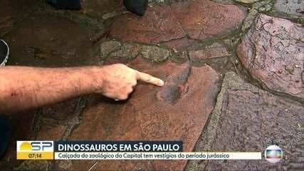 Calçadas em São Paulo e Araraquara trazem vestígios de dinossauros