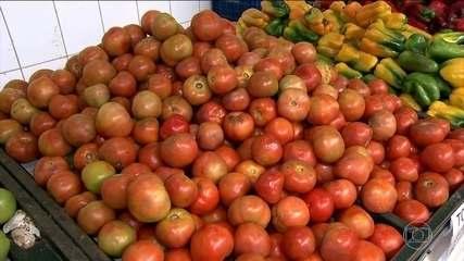 Preço do tomate tem alta e o quilo chega a custar R$10 em alguns supermercados