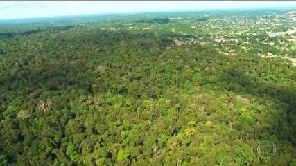 Governo quer usar fundo da Amazônia para indenizar desapropriações