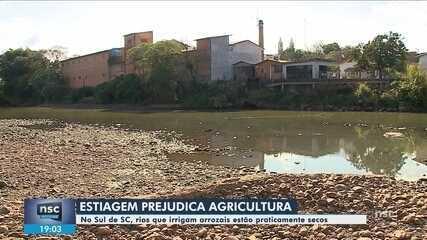 Estiagem prejudica agricultura em cidades do Sul de SC