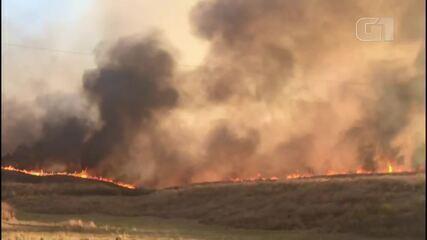 Incêndio atinge grande área de vegetação na cidade de Barro, no interior do Ceará