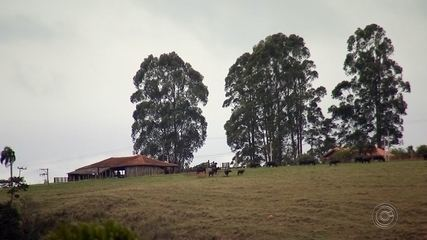 Roubos no campo preocupam moradores da região de Itapetininga