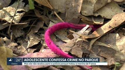 Adolescente de 12 anos confessa que matou sozinho a menina Raíssa no Parque Anhanguera