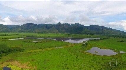 Pantanal é o bioma mais preservado do Brasil