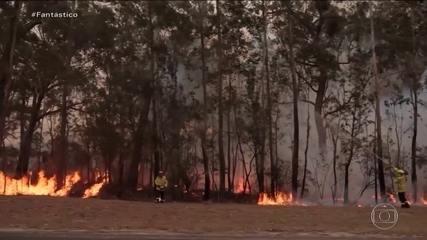 Incêndios florestais que atingem a Austrália mudam a cor do céu na Oceania