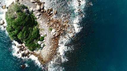Plug Expedição #1: Conheça o trabalho do Centro do Estudos do Mar no litoral paranaense