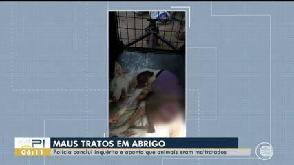 Polícia conclui inquérito e aponta que animais eram maltratados em abrigo
