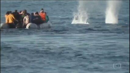 Refugiados da Síria são recebidos a tiros na Grécia