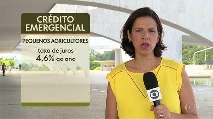 Governo libera linhas de crédito emergenciais para agricultores