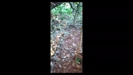 Vídeo mostra polícia encontrando uma das armadilhas em Uberaba