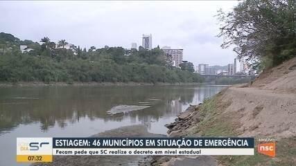 46 municípios de SC estão em situação de emergência em razão da estiagem