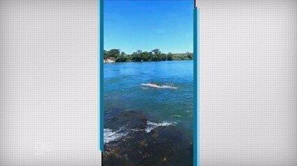 Nadador mantém treinamentos em rio de Ourinhos (SP) para o Canal da Mancha