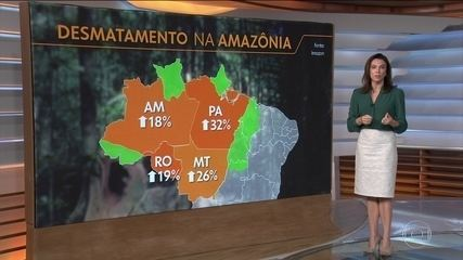 Amazônia registra maior taxa de desmatamento dos últimos 10 anos para o mês de abril