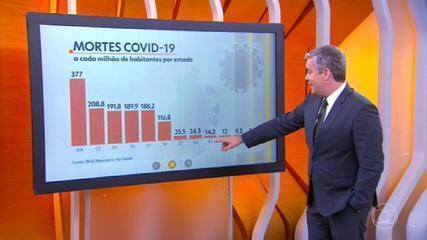 Brasil tem 291,5 mil casos confirmados do novo coronavírus