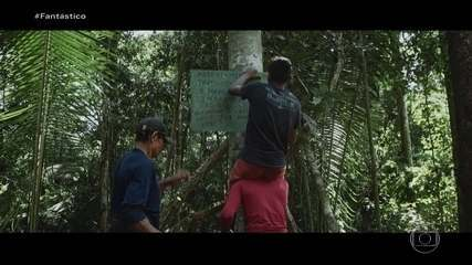 STF define em julgamento critérios de demarcação de novas terras indígenas