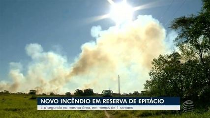 Reserva ambiental volta a ser atingida por incêndio em Presidente Epitácio