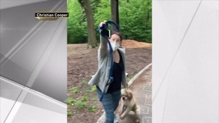 Mulher é filmada fazendo falsa denúncia contra homem negro no Central Park