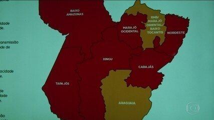 Governo do Pará estuda formas de reabrir o comércio