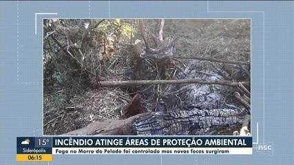 Incêndio atinge áreas de proteção ambiental em Joinville