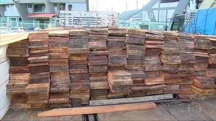 Polícias do Amazonas realizam operação contra o desmatamento e a venda ilegal de madeira