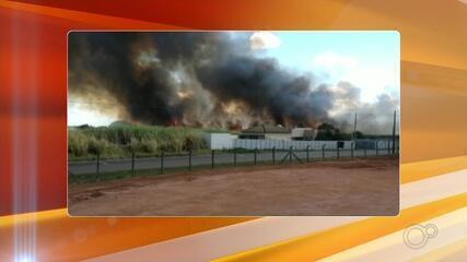 Corpo de Bombeiros de Rio Preto registra aumento no número de ocorrências de incêndios