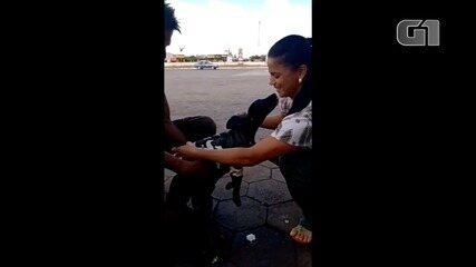 Casal doa agasalho para cãozinho de morador de rua em Goiânia; vídeo
