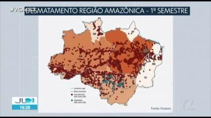 Pará lidera ranking de estados que mais desmataram a Amazônia no primeiro semestre de 2020