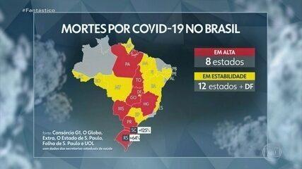 Número total de mortos pela Covid-19 no Brasil passa de 79 mil, diz consórcio de imprensa