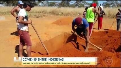 Número de casos e mortes por COVID-19 entre indígenas dispara em julho, segundo ABIP