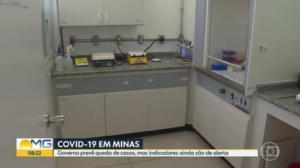 Governo de Minas prevê queda nos casos da Covid-19 nos próximos dias