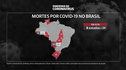 Oito estados têm alta de mortes por coronavírus, segundo análise da média móvel