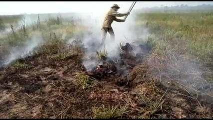 Fumaça de queimadas no Brasil chega à Bolívia e ao Paraguai