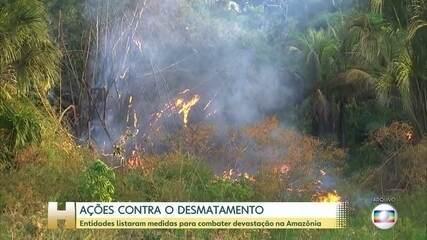 Em carta, entidades listaram ações contra o desmatamento que devem ser adotadas
