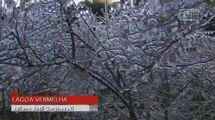 Após registro de neve, RS amanhece com -5°C