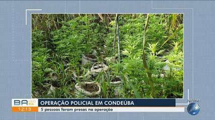 Operação policial prende cinco pessoas em Condeúba