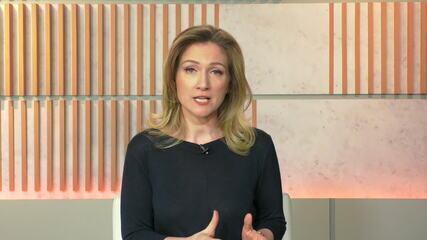 Ana Flor: 'Expectativa é que recurso chegue aos bancos para salvar microempresas'