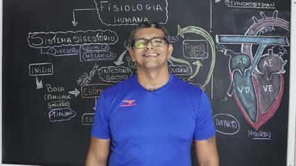 Lá Vem o Enem 2020: Professor de biologia da PB dá aula sobre fisiologia humana