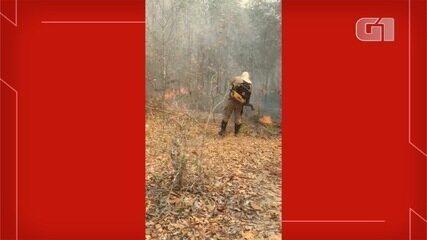 Bombeiros combatem incêndio florestal em MS
