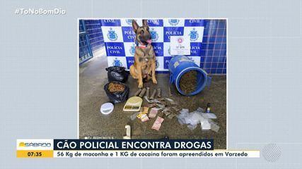 Cachorro farejador da polícia encontra 56 Kg de drogas em Varzedo